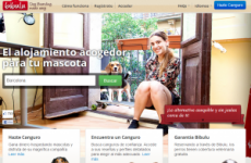 ResidenciaMascotasPerros-300x201